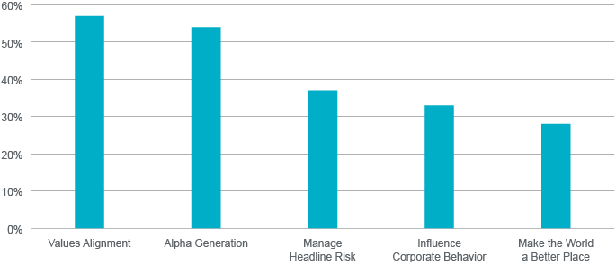 Institutional ESG Motivators