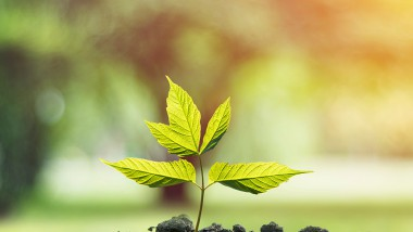 8 Keys to Understand Socially Responsible Investment