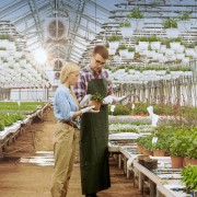 I miti e le leggende dell'ESG e dell'investimento sostenibile