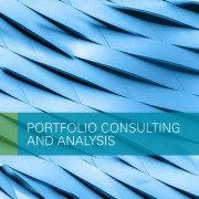 Portfolio Consulting and Analysis