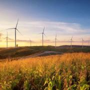 Les investissements dans les énergies renouvelables font preuve de résilience