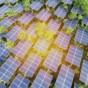 Secure Income and Green Infrastructure: An Unlikely Marriage?