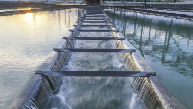 Thematics Insights : Water and Wastewater Testing