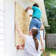 For Disaster Preparedness, Consider Crisis Alpha